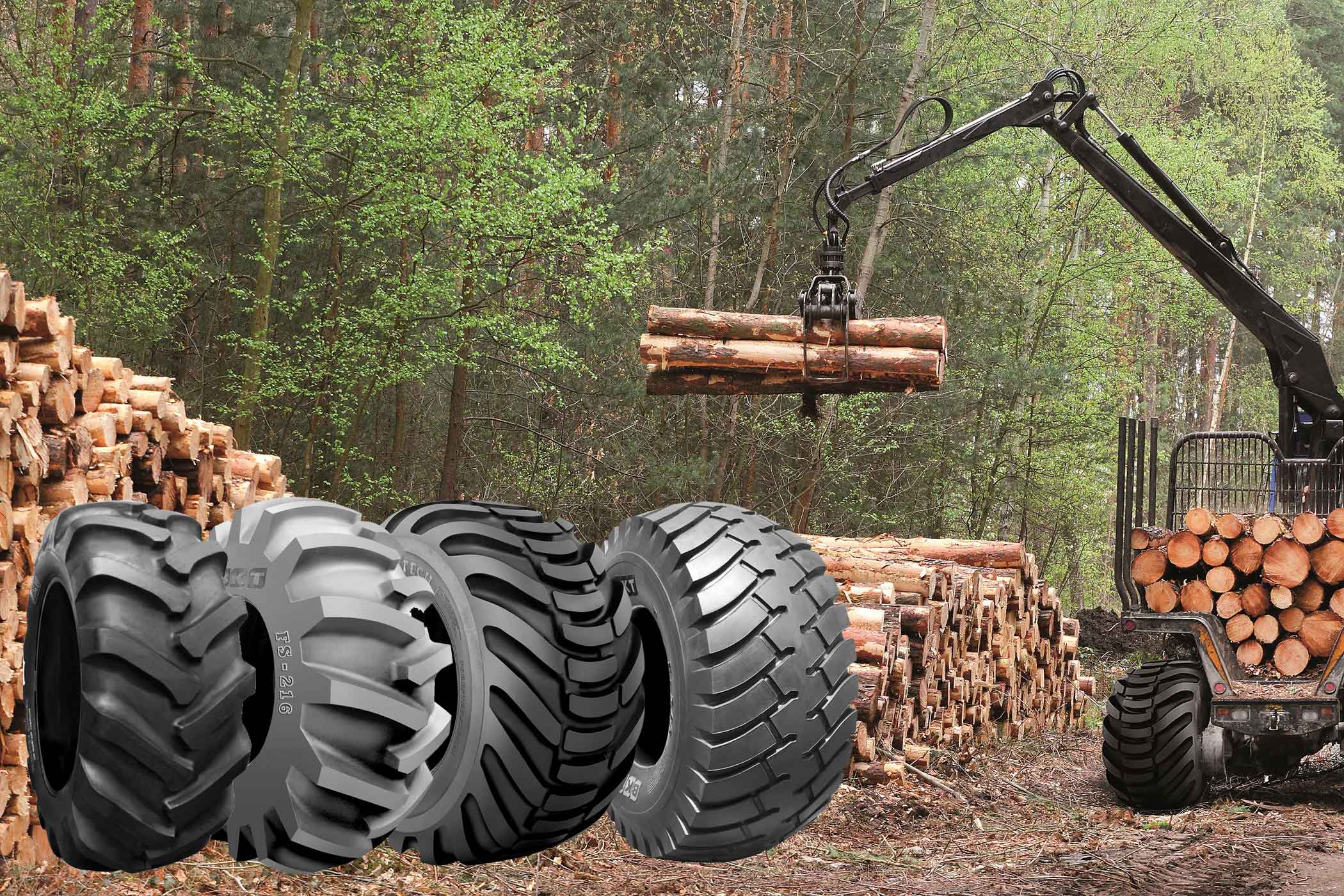 FORESTRY-A CRISIS-FREE SECTOR