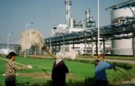 China to Increase Production and Use of Ethanol as Biofuel
