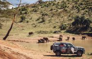 Land Rover Defender Completes Tusk Testing as part of Drive to Support Lion Conservation