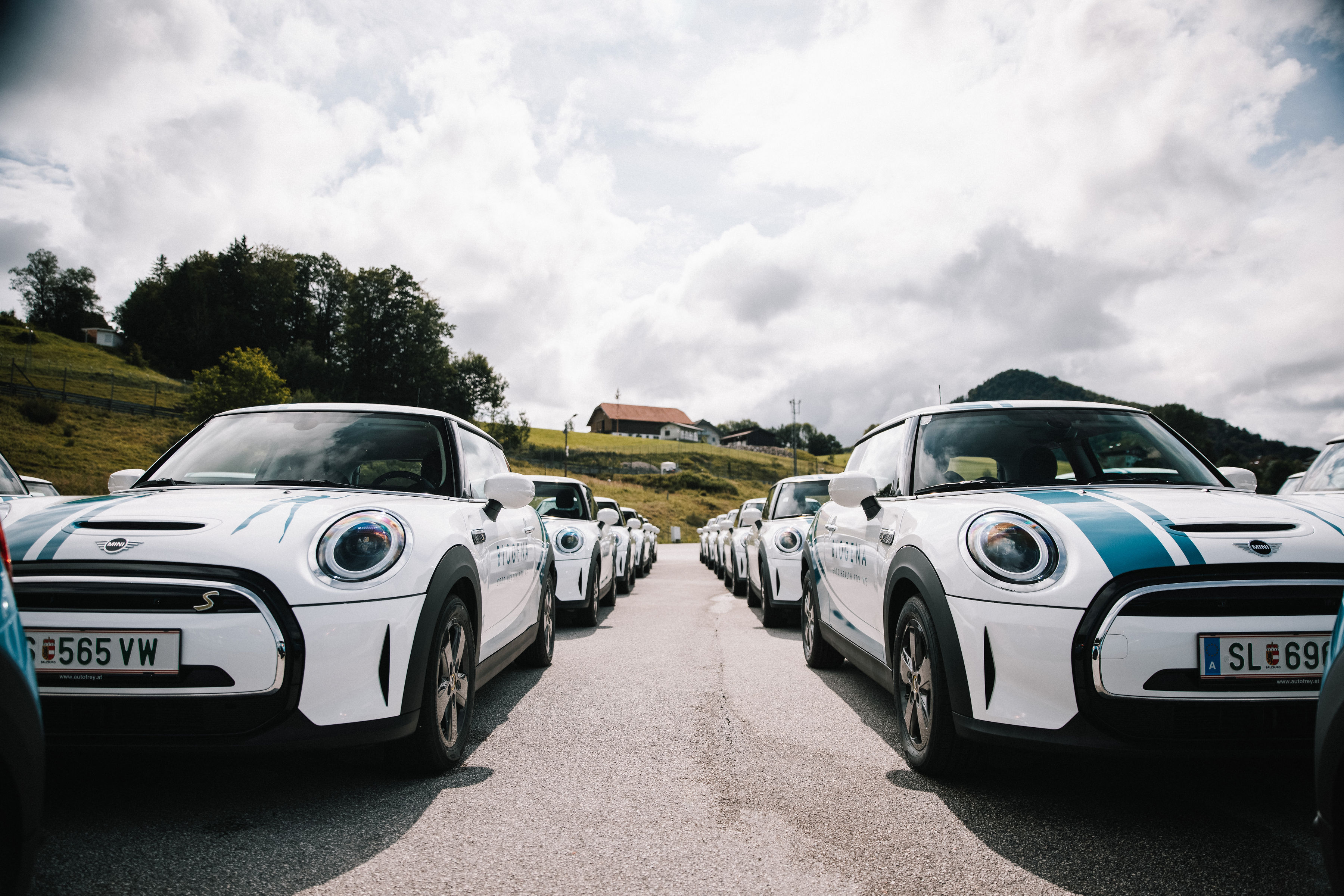 The MINI Electric as a company car Biogena takes over the largest MINI Cooper SE fleet